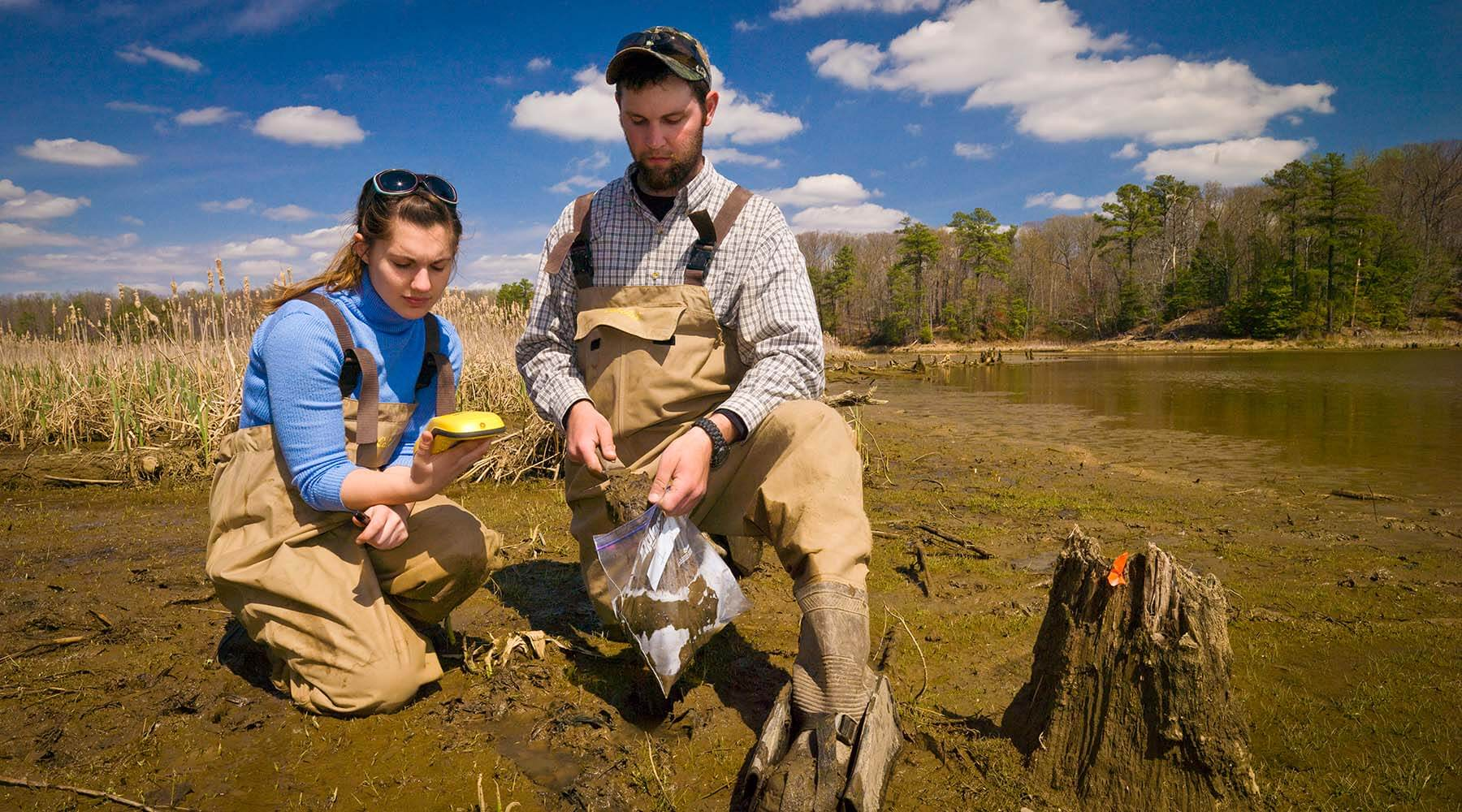 Researchers taking soil samples in marsh